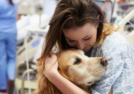Thérapie animale ou cynothérapie